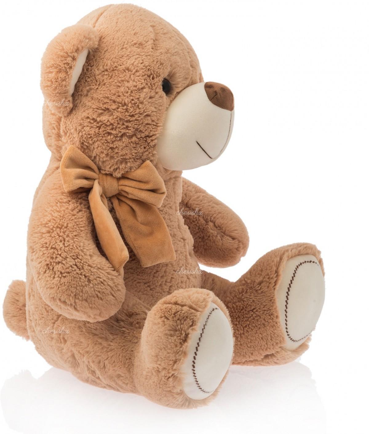 Fluffy Teddy Bear for Gifting