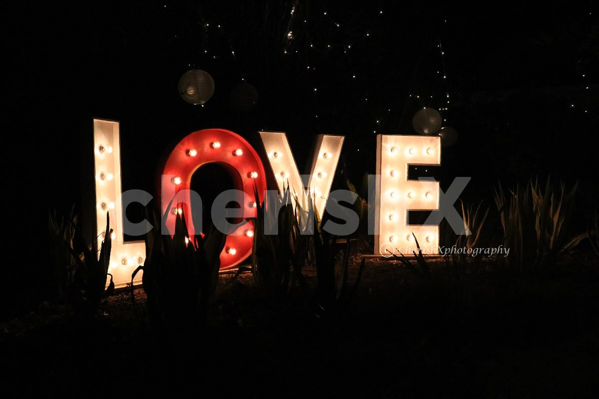 Rent LOVE marquee letters