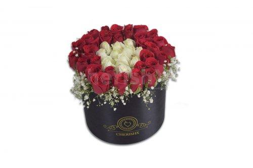 A Royal rose bucket