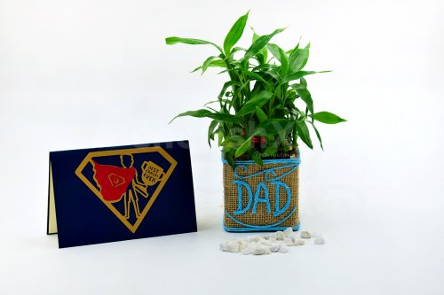 2 Layer Bamboo Plant For Dad
