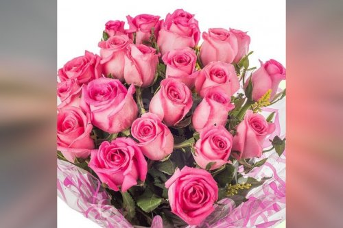 15 pink roses simple bouquet by cherishx