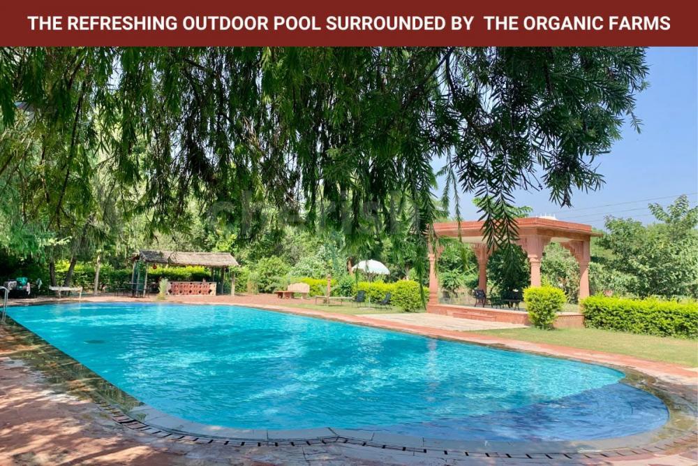 Outdoor Pool at Umaid Lake Palace CherishX