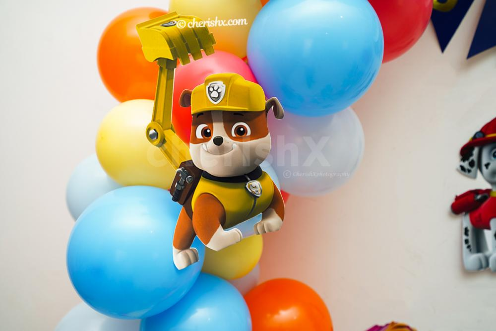 Cut-out of the character of PAW Patrol; Everest.
